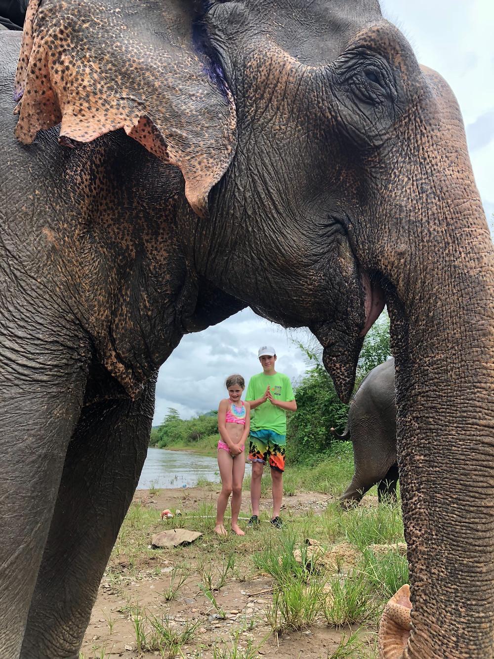 Elephant Village Sanctuary, Luang Prabang, Laos