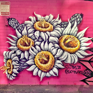 Blossom edit.jpg