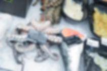 Fisch_Zegel_Läden_Web_(44_von_52).jpg