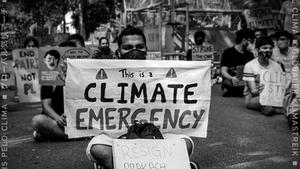 "Environmental Activism - ""Global South"""