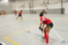 Washington DC Indoor Field Hockey Men's Women's