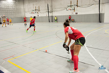 Washington DC Indoor Field Hockey Men's Women's