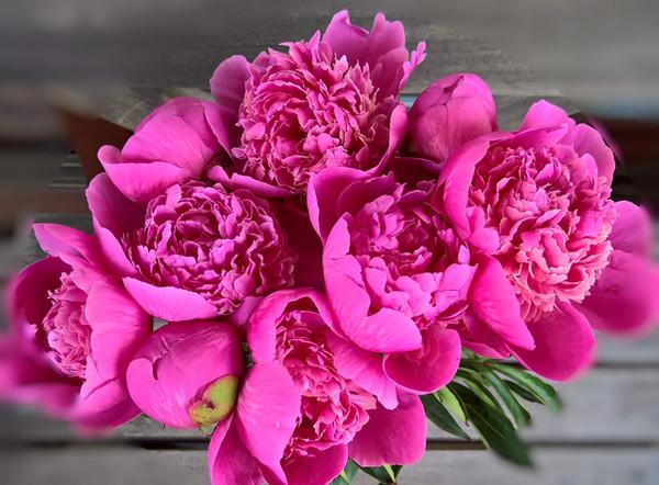 Hyvää Äitienpäivää kaikille äideille!