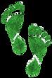 Ecologic%2520footprint%2520set%2520on%25