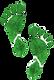 Ecologic%20footprint%20set%20on%20a%20wo