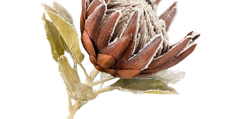 Цветок протеи H74 см, заснеженный, пластик, шоколадный
