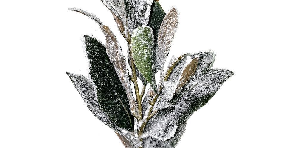 Ветвь магнолии H69 см, заснеженная, пластик, зелёный