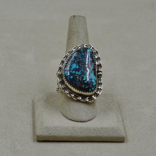 Bisbee Turquoise & Sterling Silver 9x Ring by James Saunders