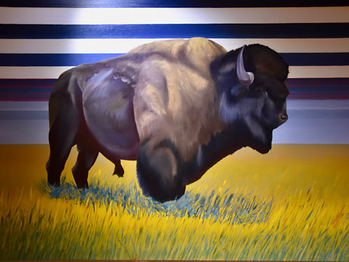 """Dazzling Buffalo"" Oil on Canvas - 18"" x 24"" by Eddy Shorty"