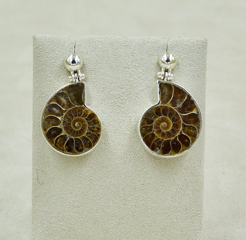 Ammonite & Sterling Silver Ball Post Earrings by Sanchi & Filia