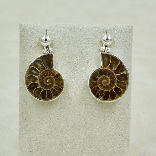 Ammonite & Sterling Silver Ball Post Earrings by Sanchi & Filia