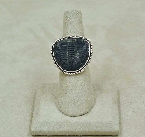 Trilobite & Sterling Silver 6x Ring by Sanchi & Filia