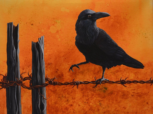 """""""Raven on Barbed Wire"""" Giclee by Liza Myers"""