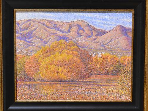 """""""Bosque Del Apache Lagoon, Autumn"""" - 11"""" X 14"""" by Roberto Veliz"""