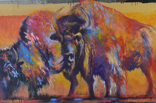 """""""Bison"""" by Farrell Cockrum"""