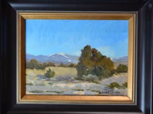 """Chimayo Afternoon"" by Donal O'Toole"