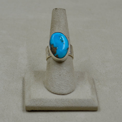 Sleeping Beauty Turquoise & S. Silver Plain Bezel 7x Ring by James Saunders