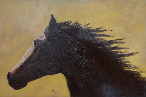 "'Feel the Wind' - Acrylic on Canvas - 20"" x 30"" - by John Saunders"