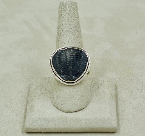 Trilobite & Sterling Silver 9x Ring by Sanchi & Filia
