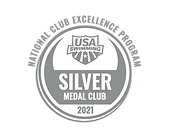 SilverMedal21.png