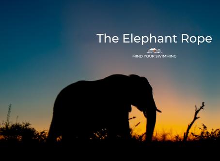 The Elephant Rope