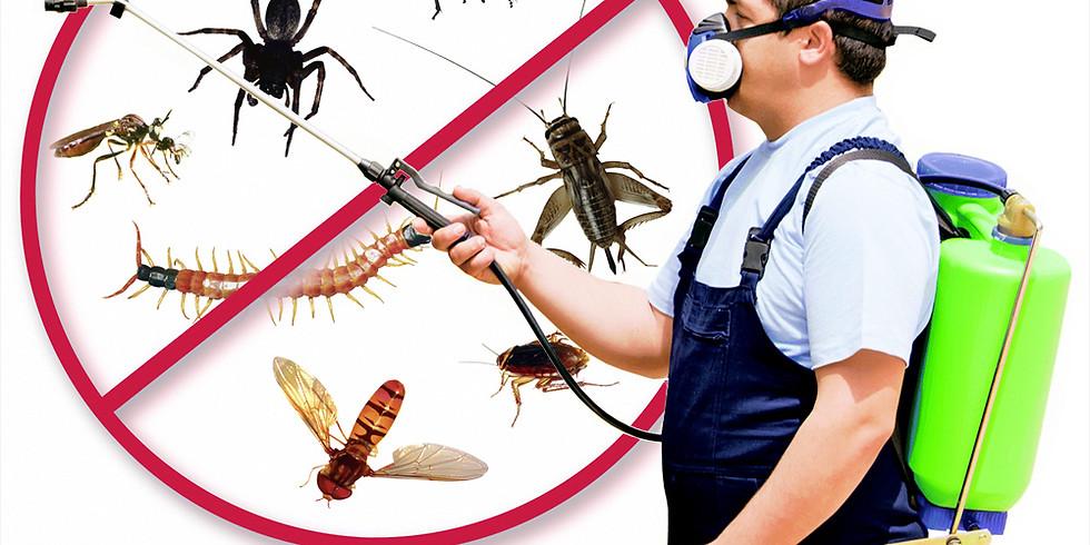 Pest Inspection & Spraying - Winter