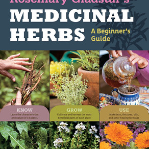 "Book review ""Medicinal Herbs- a beginner's guide by Rosemary Gladstar"""
