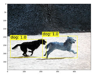 Figure_1_edited.jpg