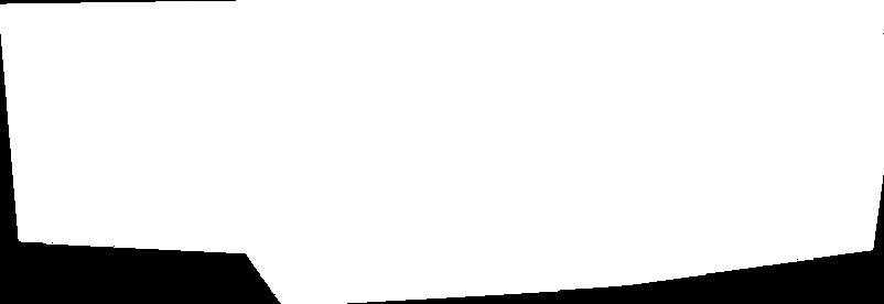 White odd box for PP banner-trans.png
