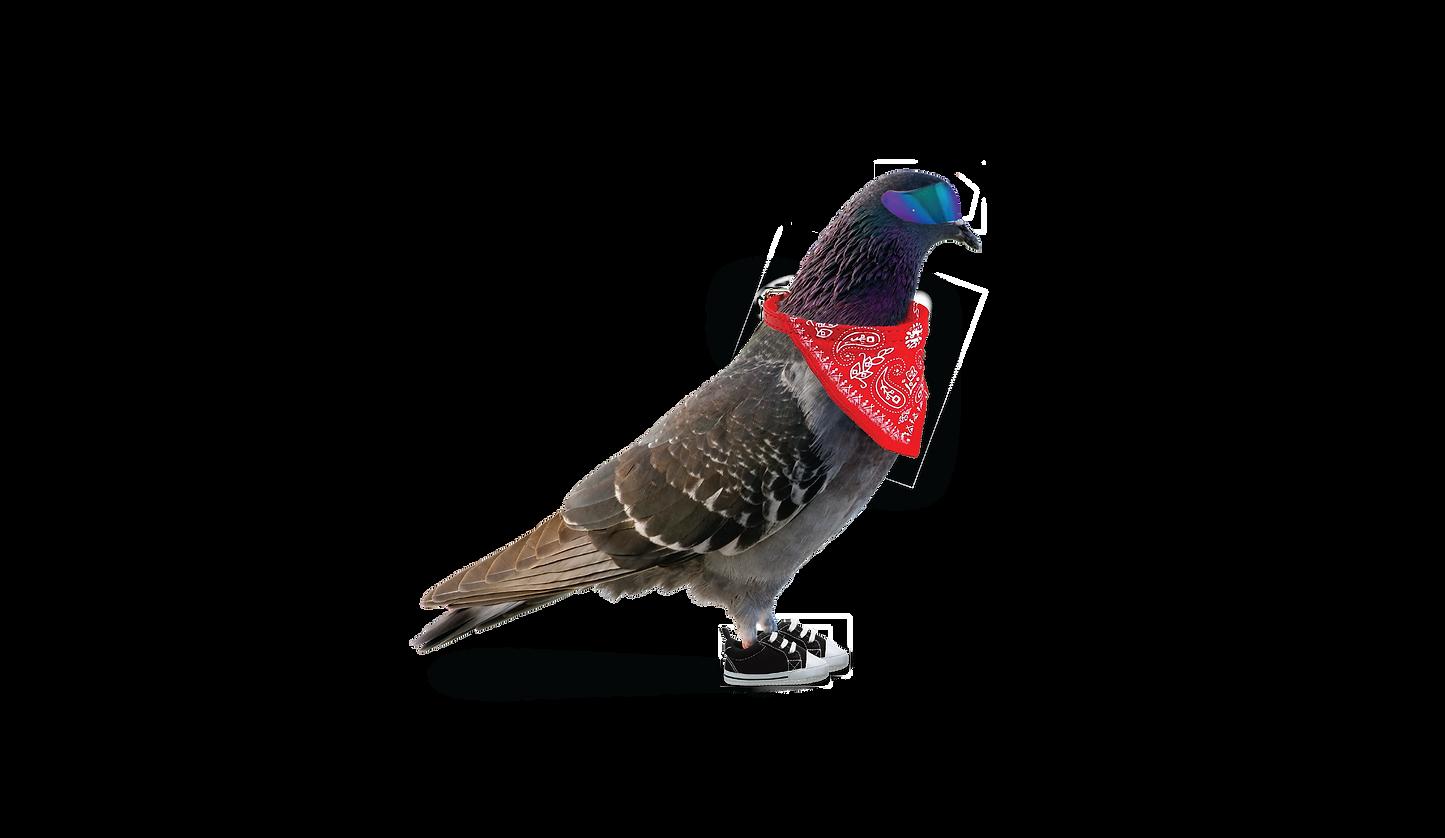 bebird-01.png