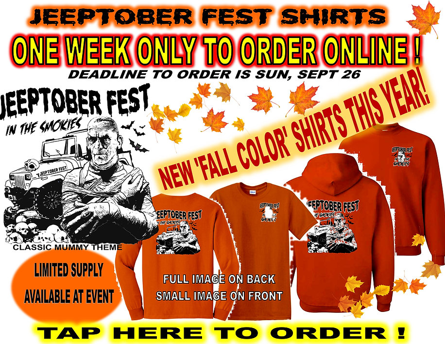 Mummy Shirt Ad for website.jpg