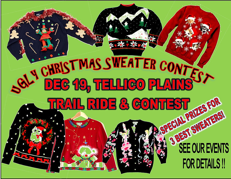 ugly sweater contest 3.jpg