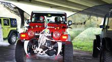 Jeeps decor 8.jpg