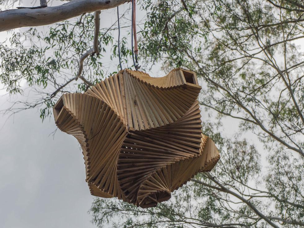 Tree Lamp Dancefloor