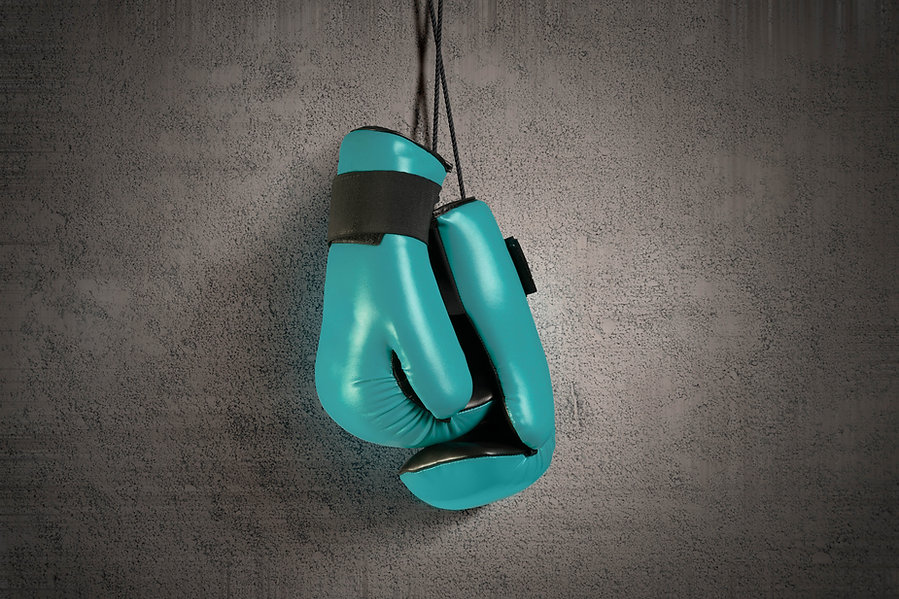 Fertility Fight Club boxing gloves.jpg