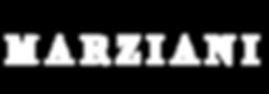 logotipo-transparente-blanco.png