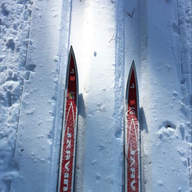 Trusty old skis by Jody Mendenhall