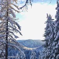 Winter Wonderland by Jody Mendenhall
