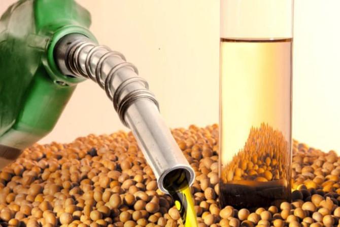 Aumento percentual biodiesel B11 em 2019 podendo chegar a B15 em 2023