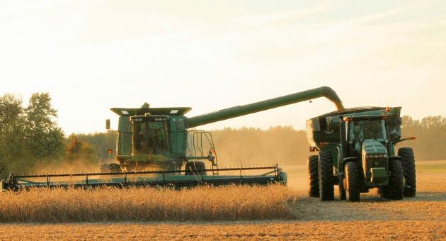 MT lidera ritmo nacional na colheita da safra de soja