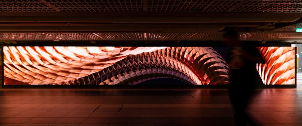 Desert Dragon by Cheng Si Min & Chloe Leong