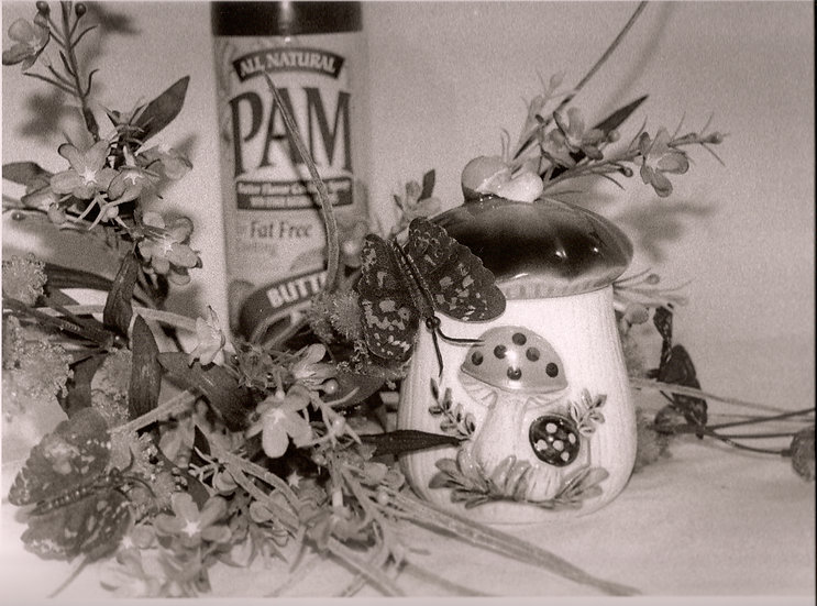 Still Life with PAM