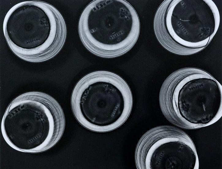 7 Plastic Cups