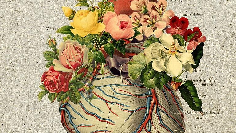 SHSG Feb 2021: The Heart & Its Vessels