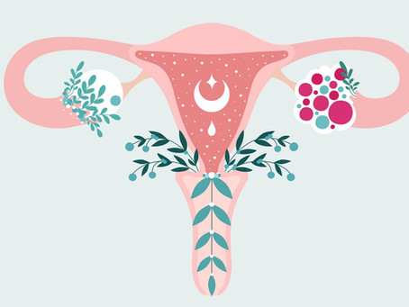 The Menstrual Cycle: Perfectly Imperfect