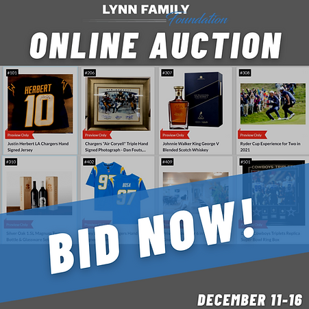 Online Auction (1).png
