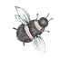 bee500x500.png
