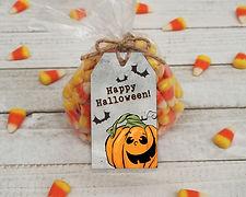 PumpkinBat2.jpg