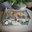 Thumbnail: Healing Crystal Garden Terrarium