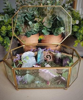 Healing Crystal Garden Terrarium